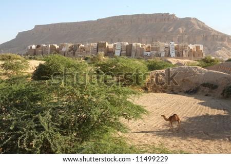 Shibam, the Manhattan of the desert, in Yemen.