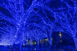 Shibuya Blue Cave winter illumination festival, beautiful view, popular tourist attractions, travel destinations for holiday, famous romantic light up events in Tokyo, Japan. Translation :
