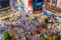 Shibuya, Tokyo, Japan crosswalk and cityscape.