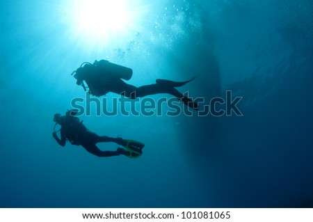 shilouetted scuba divers swim in the deep blue ocean