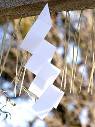 Shimenawa at the shrine. It is a mark to distinguish the sacred area from the outside.