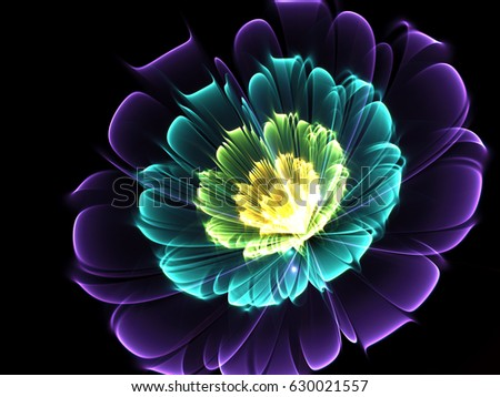 Shine Flower Background   - Fractal Art