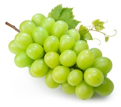 Shine Muscat Grape isolated on white background, Green grape with leaves isolated on white With clipping path.