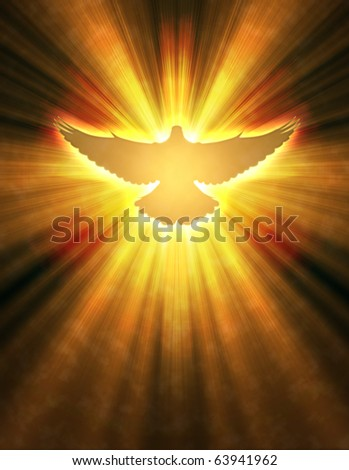 shining dove with rays on a dark golden background - stock photo
