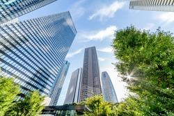 Shinjuku Tall Buildings Group/Shinjuku is a city in Japan