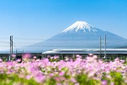 Shinkansen bullet train passing by Mount Fuji, Yoshiwara, Shizuoka prefecture, Japan