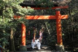 Shinto priests passing under the torii towards the main shrine. Chinekisai festival, Usa shrine, Oita prefecture, Kyushu, Japan.