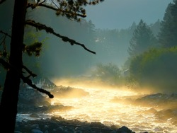 Shiny fog above the mountain river after rain