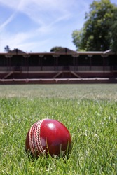Shiny new cricket ball on grass in front of grand stand.