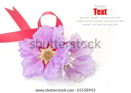 Shiny red ribbon bow and pink flower on white background with copy space