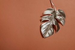 Shiny silver leaf monstera on terracotta background. Trendy design. Pastel Minimalism. Copy space Close-up. Tropical decor concept for modern design.