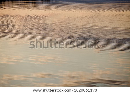 Photo of  Shiny surface of calm water with golden highlights and reflections. Beautiful glowing ripples on water surface close-up. Water surface with abstract pattern and white clouds and blue sky reflections.