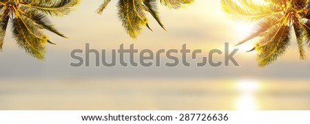 Shiny tropical landscape banner background. Coconut palm tree over blurry ocean. Panoramic view.