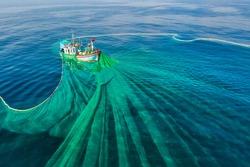 Ships and fishermen are fishing anchovies in Yen Island, Phu Yen, Vietnam