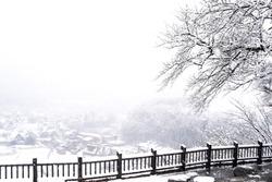 Shirakawa-go villages snowfall day, Gifu prefecture Japan. Shirakawago famous Gassho-zukuri houses steep thatched roofs, Village hill view point in snowing fall winter, inscribed UNESCO World Heritage