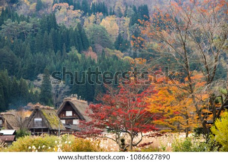Shirakawago is one of the most famous tourist destinations in Japan, where all the tourists are keen to visit. The atmosphere here is a traditional peasant village that preserves traditional buildings #1086627890