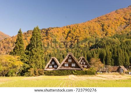 shirakawagovillage with mountain in autumn ストックフォト ©
