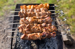 Shish kebab of the pork with the mix of spices on skewers on the old grill