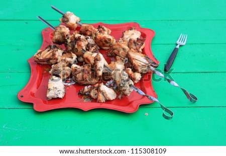 shish kebab on tray on green table