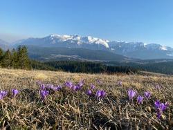 Shkrel rugova mountain sky green