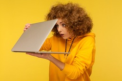 Shocked frightened woman with curly hair in urban style hoody looking furtively at half closed laptop screen, upset scared of error, software failure. indoor studio shot isolated on yellow background