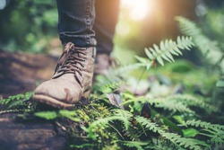Shoes Man walking on a forest path in autumn and Lifestyle hiking concept.Travel hiking.