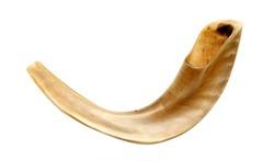 shofar-horn isolated on white. for Rosh hashanah -jewish new year