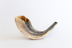 shofar (horn) isolated on white. rosh hashanah (jewish holiday) concept . traditional holiday symbol.