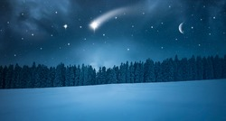 Shooting star on a cold winter night in the forest
