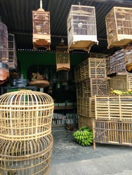 Shop for bird cages and other animal supplies. Traditional shop in rural area. Sold a variety of bird cages, rooster, and a variety of pet food.