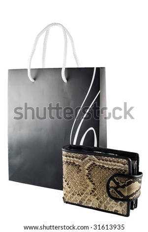 Shopping bag and the purse from snake skin