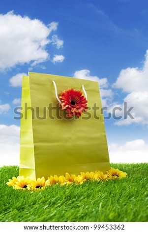 Shopping bag with flowers shot on the green field