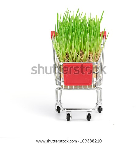 shopping cart isolated on a white background