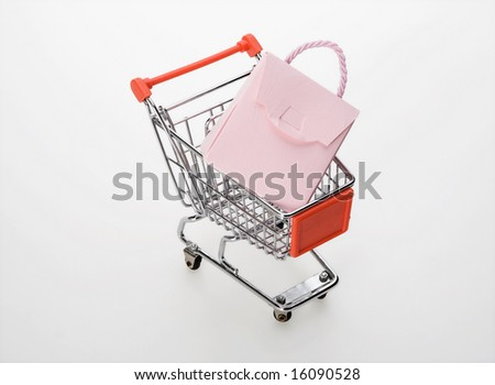 shopping cart with a bag