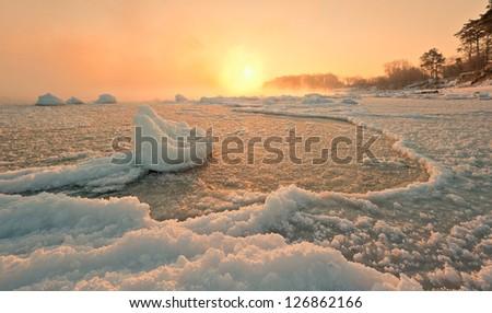 shore in winter