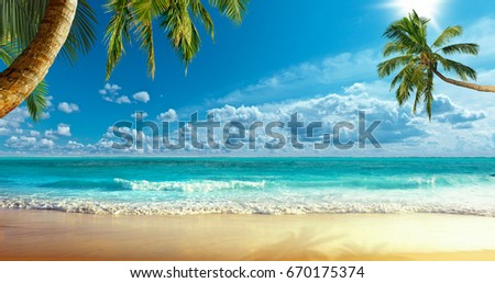Shore of the ocean - Shutterstock ID 670175374