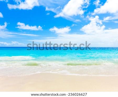 Shore Sea Landscape  #236026627