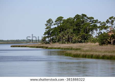 Shoreline of Apalachicola Bay