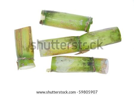 Short Stumps Of Sugarcane On White background
