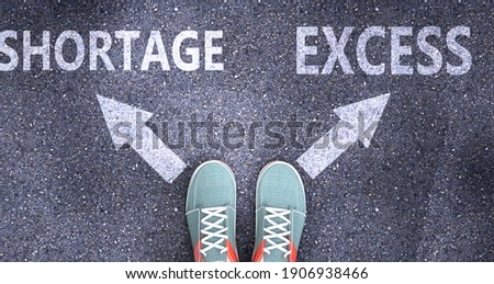 Shortage and excess as different choices in life - pictured as words Shortage, excess on a road to symbolize making decision and picking either Shortage or excess as an option, 3d illustration Stock photo ©