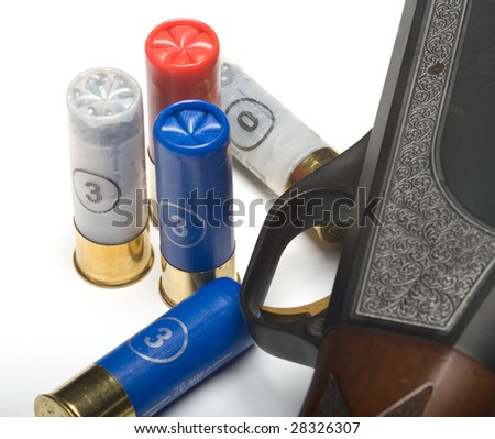 Shot-gun and the hunting cartridges on a white background. A close up