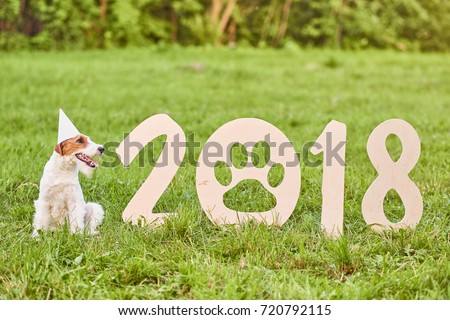 Shot of a happy young fox terrier puppy wearing party hat sitting next to 2018 wooden sing new year celebration festive greeting card nature outdoors concept.  #720792115