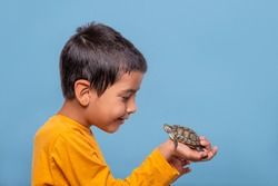 Shot of a young smiling boy wearing yellow shirt holding a turtle in his hand on a blue background with copy cpace.  The concept of children's hobbies. Happy childhood concept