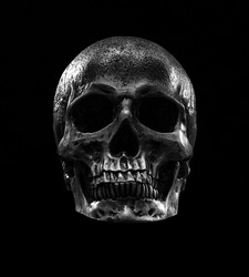 Shot of human skull with neon lights isolated over black background