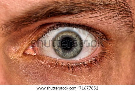 Shot of scared man eye. Extra close-up view