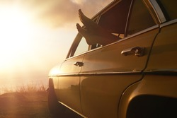 Shot of woman relaxing in a car on road trip. Female feet hanging out of vehicle window at sunset.