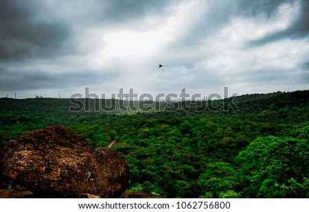 Shot this picture from the top of Kanheri caves, Borivali national park. Kanheri caves is a 2000 years old cave located in Mumbai. Shot it in the monsoons of 201.It is also known as Sanjay Gandhi park