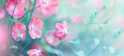 Shot with soft selective focus. Amazingly beautiful wild flowers bluebells close-up macro in nature outdoors. Author's toning in turquoise and pink color. Gentle airy light artistic image nature.