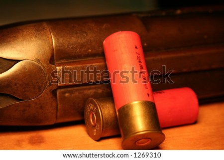 Shotgun and Shells