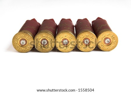 Shotgun Shells isolated. Shotgun bullets